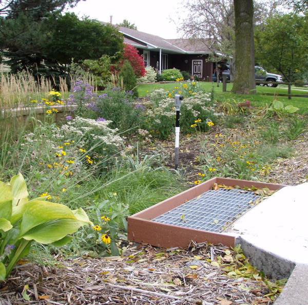 Ejemplo de caso pr ctico jardines de lluvia c mo se for Ejemplos de jardines
